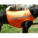 Windhund Warn-, Renn- und Tobeweste in neonorange, 5 Größen lieferbar