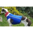 Windhund Warn-, Renn- und Tobeweste in royalblau, 5 Größen lieferbar